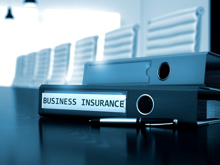 17 01 DB The Basics of Business Insurance - The Basics of Business Insurance